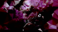 series transcendental fields : from peony, colorful (TRANSITION) video