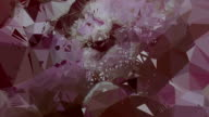 series transcendental fields : from peony (TRANSITION) video