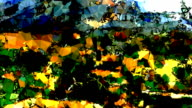series transcendental fields : from provence, colorful (LOOP) video