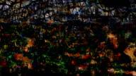 series transcendental fields : from provence, dark (TRANSITION) video