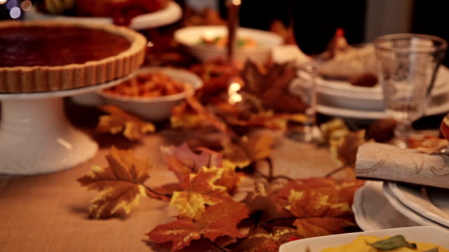Serving Thanksgiving Turkey Dinner video