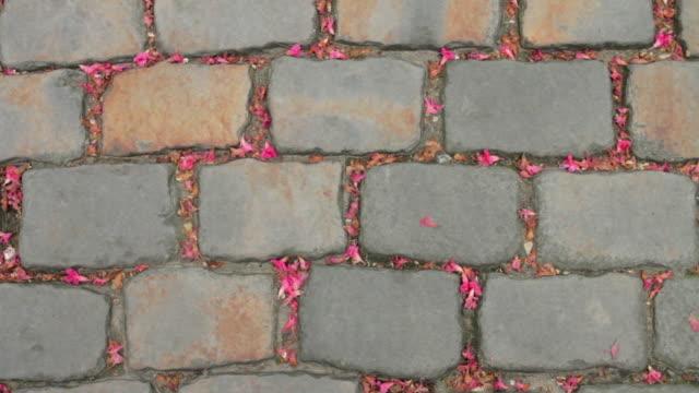 Sett cobblestone, or Belgian block, in Paris, France video