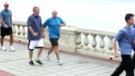Seven men walking across a bridge video