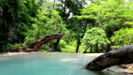 Seven-tiered waterfall in Erawan National Park in Thailand video