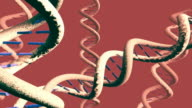 several DNA helices drifting in solution [002] video