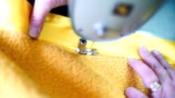 Sewing process. video