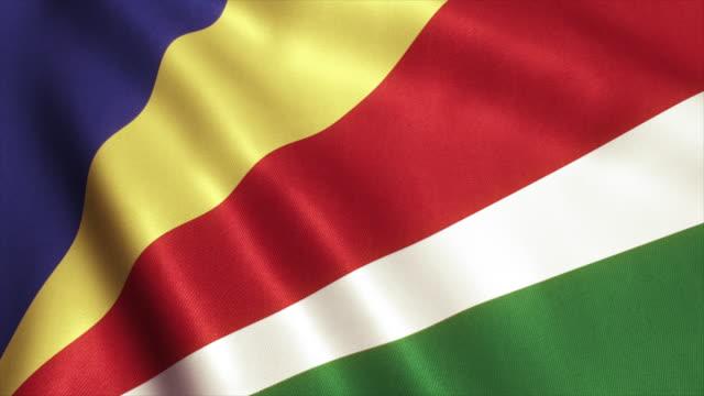 Seychelles Flag Video Loop - 4K video