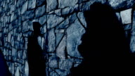 Shadow of a kissing couple in moonlight video