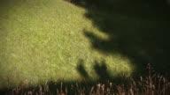 Shadows of hikers - persone camminano sul prato video