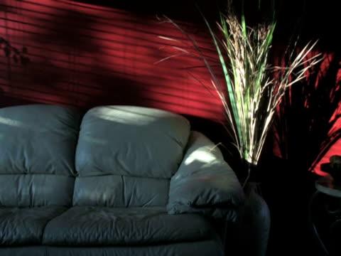 Shadows on Wall 1 video