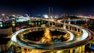 Shanghai Nanpu Bridge at Night - Timelapse Pan video
