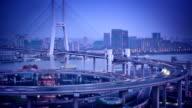 Shanghai Nanpu Suspension Bridge video