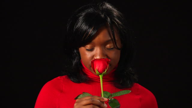 Shan's Rose 2 (720/24P) video