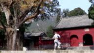 Shaolin Kung Fu video
