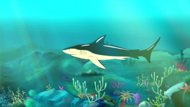 Shark Underwater video
