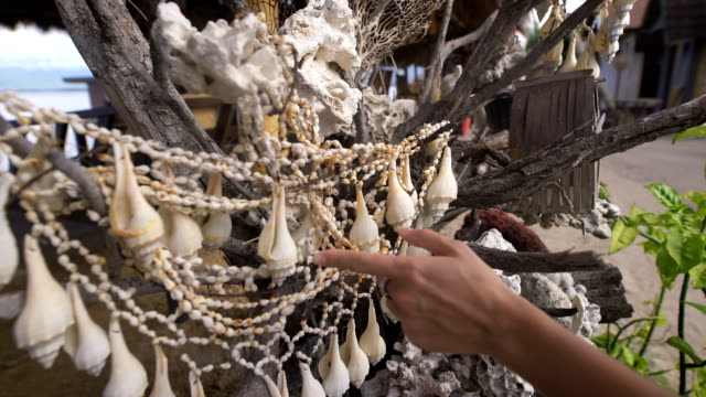 She travels to Bali. While walking she saw a tree on which hung the shells. She holds a hand on them, and enjoys making sounds video