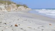 Shell beach video