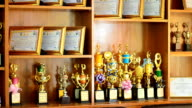 Shelves of trophies video