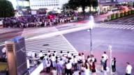 Shibuya Crossing at Night. Time lapse. Tokyo. video