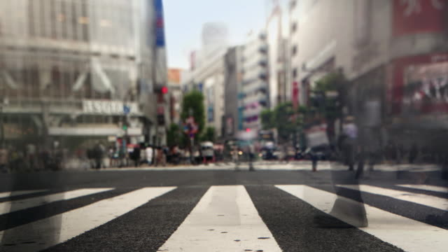 Shibuya Crossing Intersection Crowd Timelapse Tokyo Japan. video