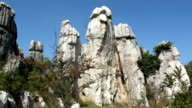 Shilin Stone Forest video