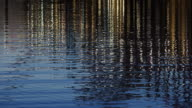 Shimmering Water Reflecting Lights video
