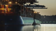 Shimmering Waters in the Port of Los Angeles video