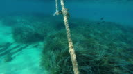 Ship's old anchor and chain line under sea in Greece video