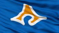 Shizuoka Prefecture Isolated Waving Flag video