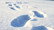 Shoe footprints on the snow video