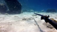 Shooting with a speargun underwater video