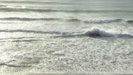 Shorebreak video