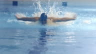 Shot from Front Side of Professional Swimmer Performing Butterfly Stroke during Training in Swimming Pool video