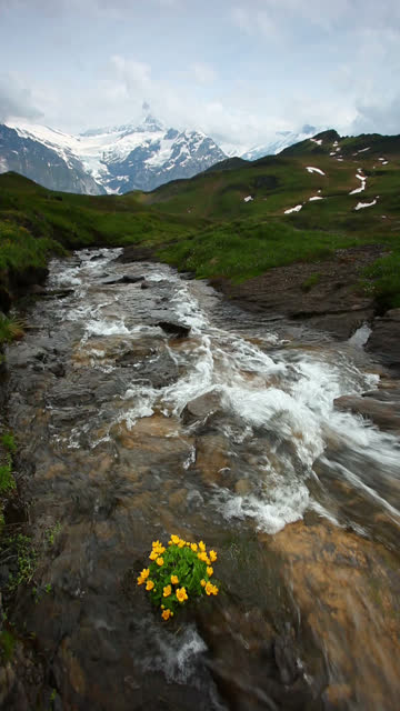 Shot of waterfall in Grindelwald Switzerland video