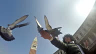 SLO MO Shot Woman feeding pigeons on St. Mark's Square. HD stock footage video