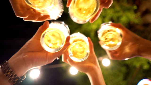 4 Shots of Cheers! Happy Beer Party video