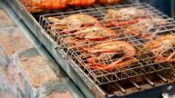 shrimp  on kiln video