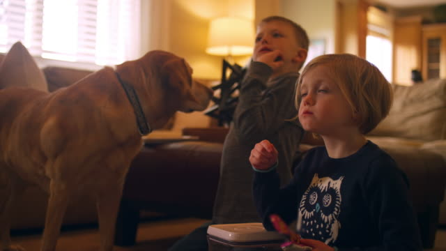Siblings watching television together while eating snacks, with the family dog video