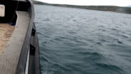 side view from a boat in the sea video