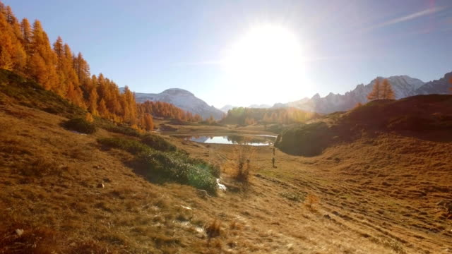 side POV walking on fall field path near lake with sun and snowy mounts.Sunny autumn day Hiking in colorful red forest wild nature mountain outdoors.Alps Devero.4k point of view establishing video video
