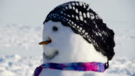 Sideview of the snowman in black hat video