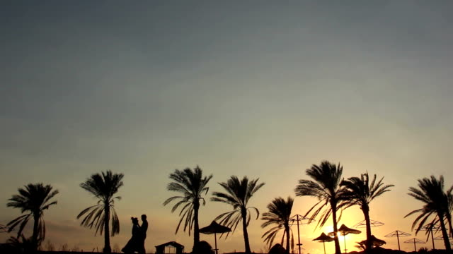 Silhouette Of A Loving Couple Under the Palm At Sunset Embrace and Kiss video