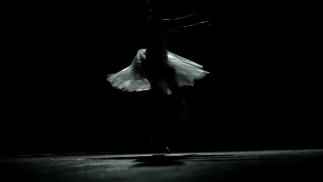 Silhouette Of Ballerina In Classical Tutu video