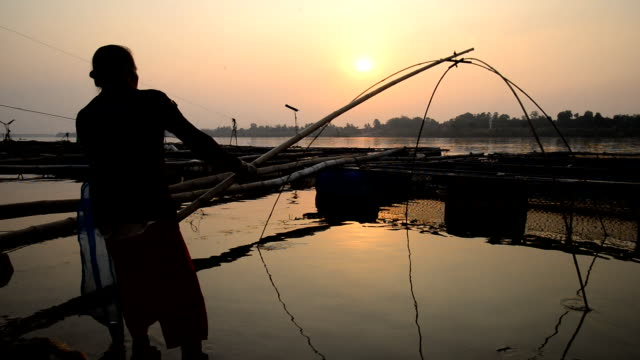 Silhouette of fishing video