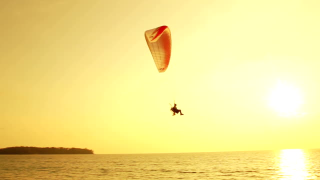 Silhouette of paragliding at sunset over tropical beach video