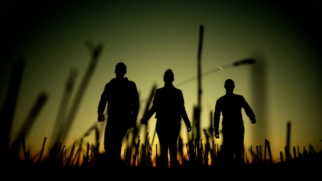 Silhouette of three friends walking video