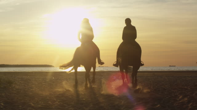 Silhouette of Two Young Women Riding Horses on Beach video