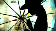 Silhouette of woman with umbrella and flower video