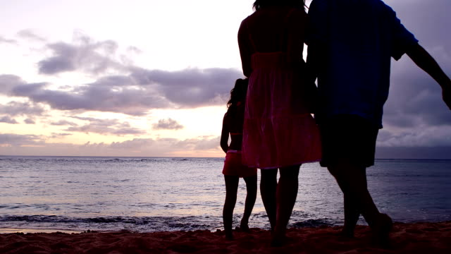 Silhouetted family holds hands on beach video