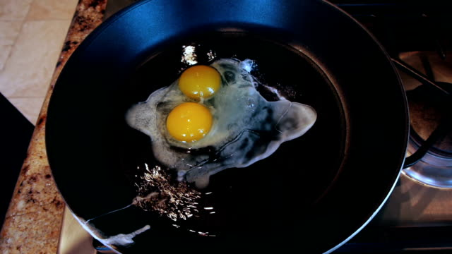 Single Egg Shell With Two Yolks video